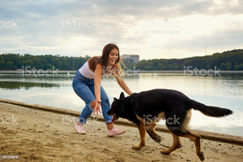A girl is playing with her dog in the park on the summer beach. stock photo