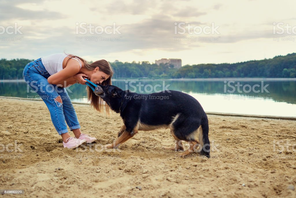A girl is playing with her dog in the park on the summer. stock photo