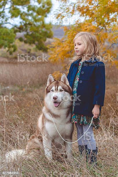 Girl is walking with cute husky dog picture id627984910?b=1&k=6&m=627984910&s=612x612&h=wseqmonl9cuubv2sbepjh57t8sts0k7aukbdgjsb0m8=