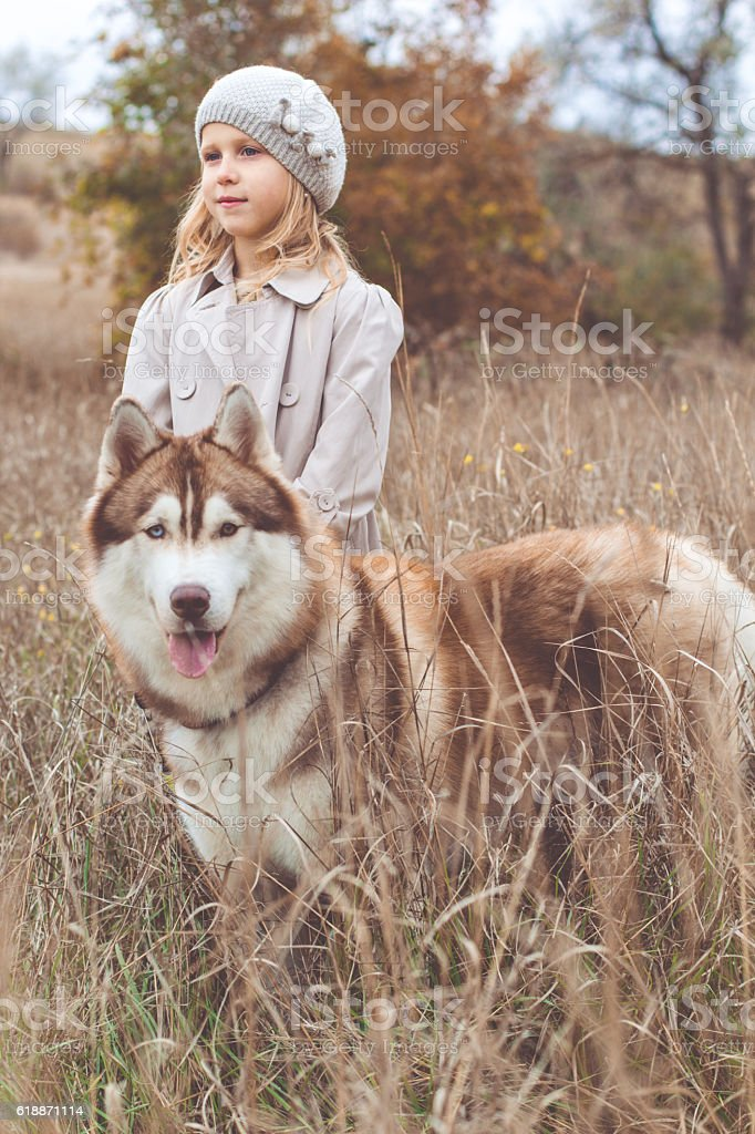025f063f8fb Girl Is Walking With Husky Dog Stock Photo   More Pictures of ...