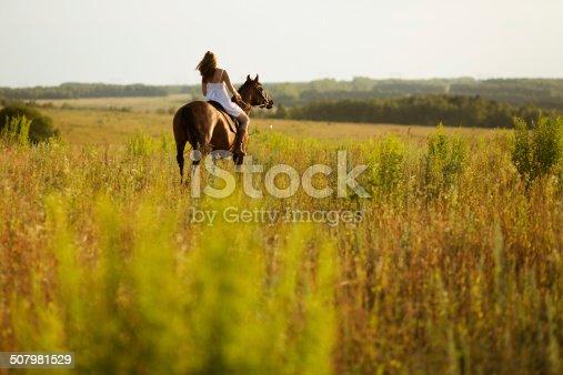 1128475475 istock photo Girl jump on field on a horse 507981529
