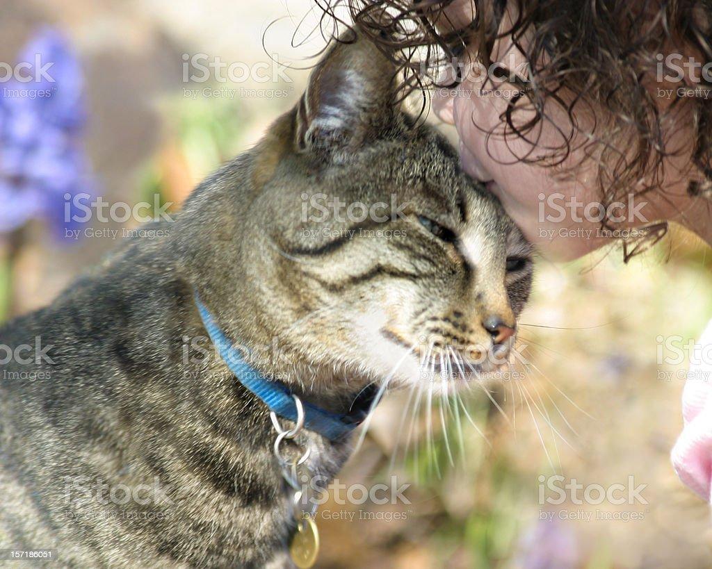 Girl Kissing Cat stock photo
