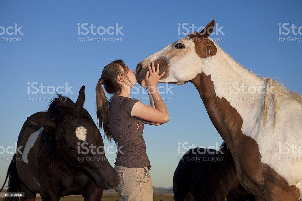 Girl Kissing Horse stock photo