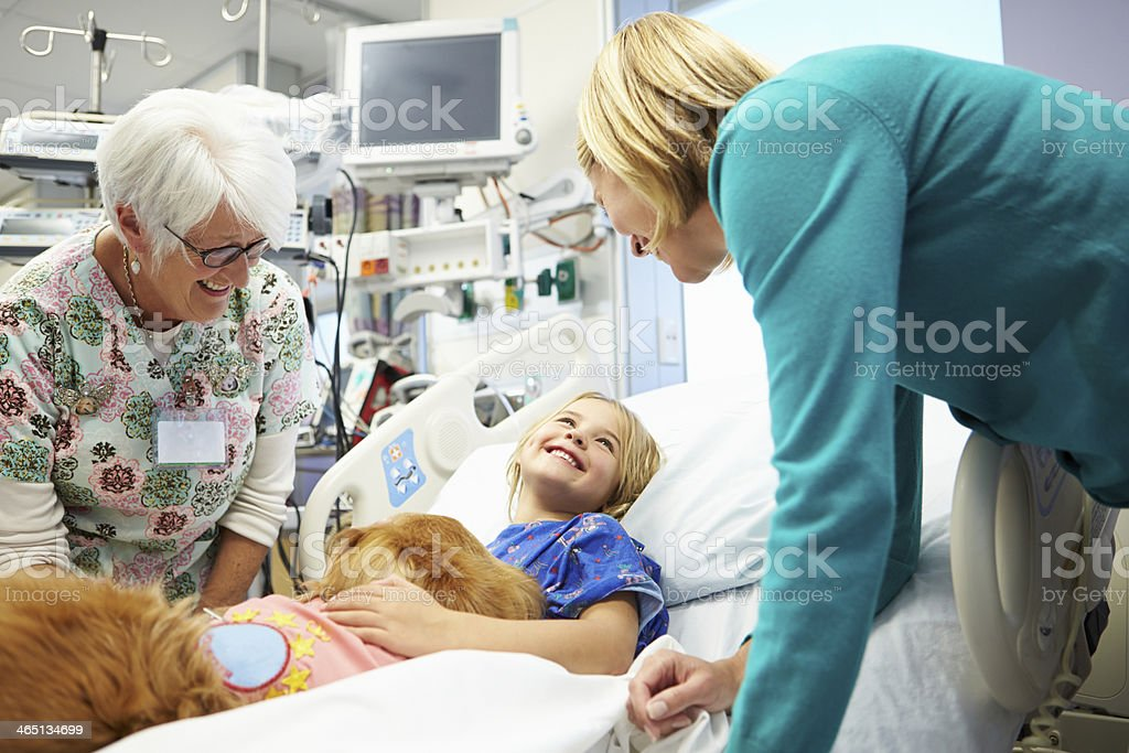 A girl lays in a hospital bed while smiling at two adults stock photo