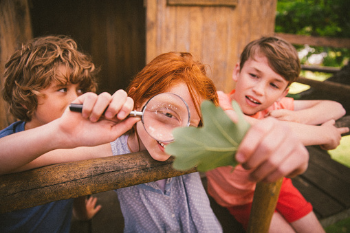 Girl looking at a leaf with magnifying glass with friends