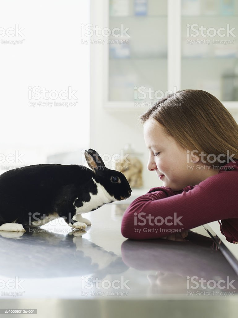 Girl (8-9) looking at bunny on exam table in veterinarian exam room royalty free stockfoto