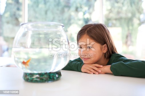 109350576 istock photo Girl looking at goldfish in bowl 169816896