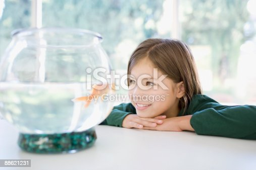 109350576 istock photo Girl looking at goldfish in bowl 88621231