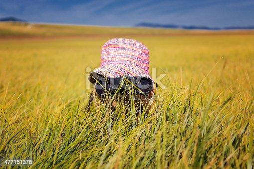 istock Girl looking through binoculars 477151378