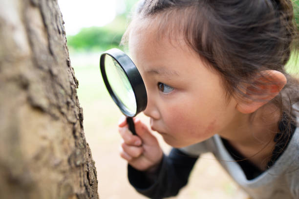 Girl looking with magnifying glass stock photo