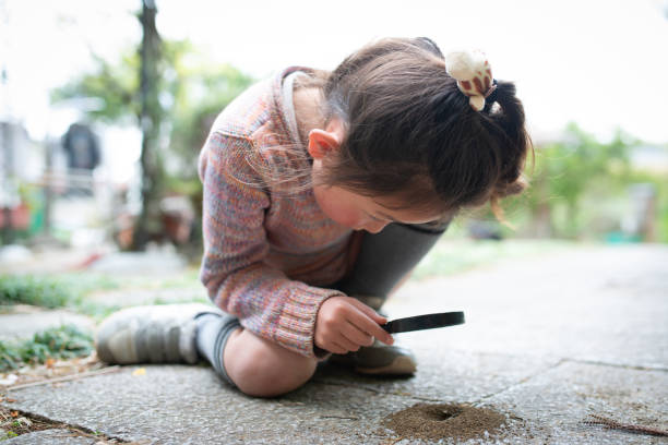 Girl observing ant nest with magnifying glass stock photo