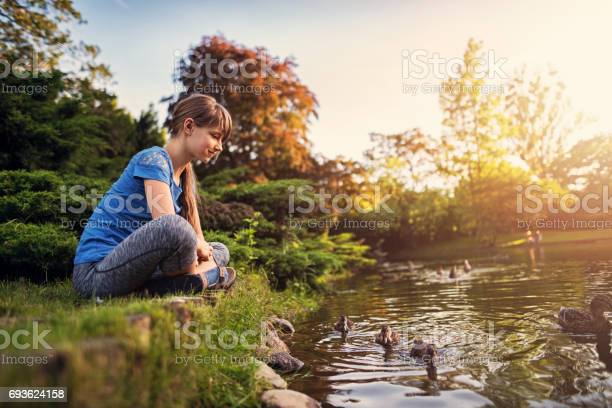 Photo of Girl observing ducks swimming in the city park