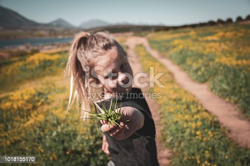 girl in centre offering autumn seeds with blurred dirt road and spring flowers in the background