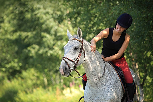 girl 乗馬森林の,norway - 乗馬 ストックフォトと画像