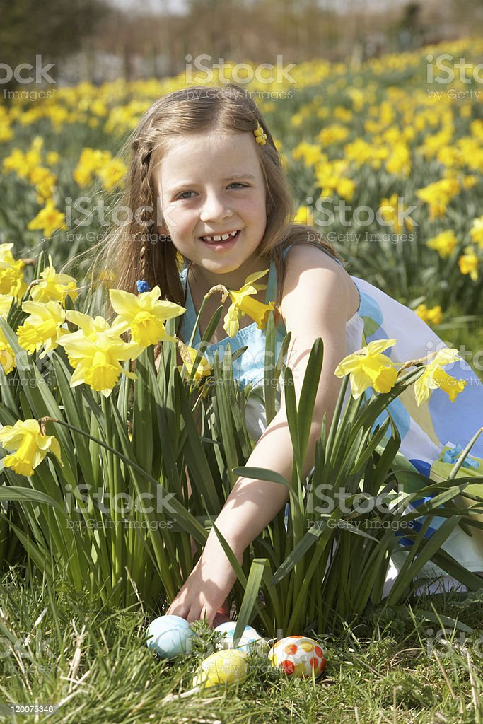 Girl On Easter Egg Hunt In Daffodil Field royalty-free stock photo