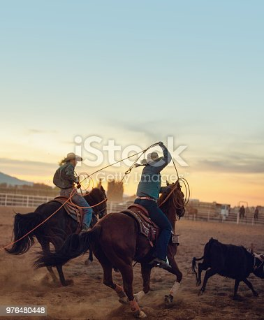 Girl on team roping rodeo action