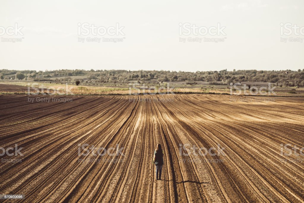 Girl on the field with stripes stock photo