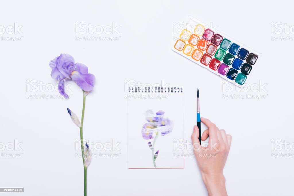 Girl painted a blue flower in a notebook with watercolors royalty-free stock photo