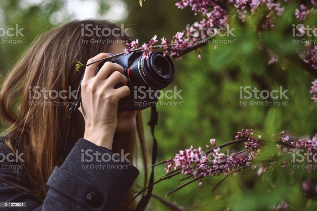 Girl photographing flowers of blossoming tree stock photo
