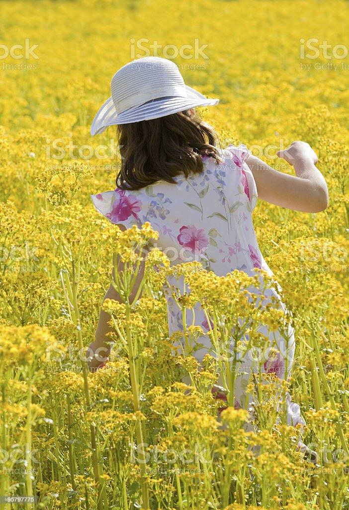 Girl Picking Flowers royalty-free stock photo