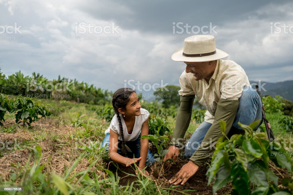 Girl planting a tree with her father at the farm stock photo
