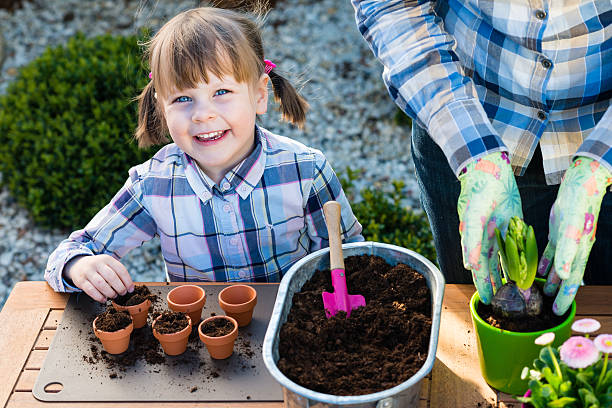 Girl planting flower bulbs stock photo