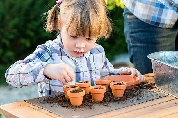 Girl planting flower seeds into pots with her mother stock photo