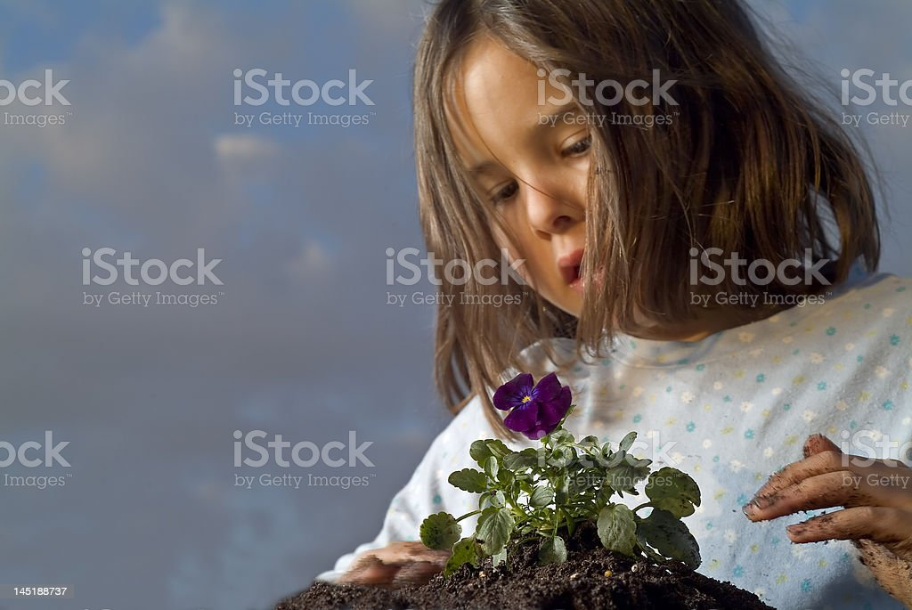 girl planting royalty-free stock photo
