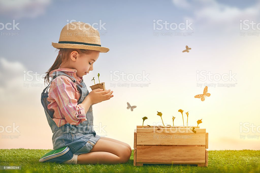 girl planting seedlings stock photo
