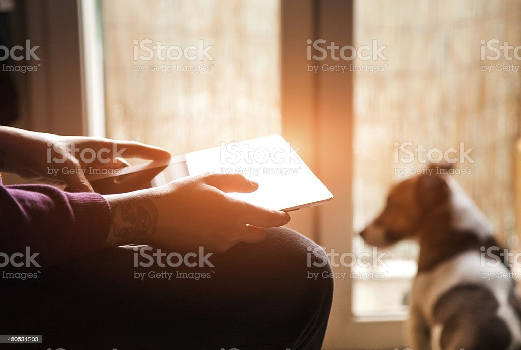 Girl play with tablet stock photo