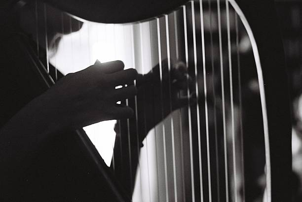 girl playing the harp - harpist stock photos and pictures