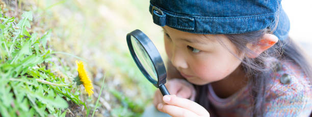 Girl playing with a magnifying glass stock photo