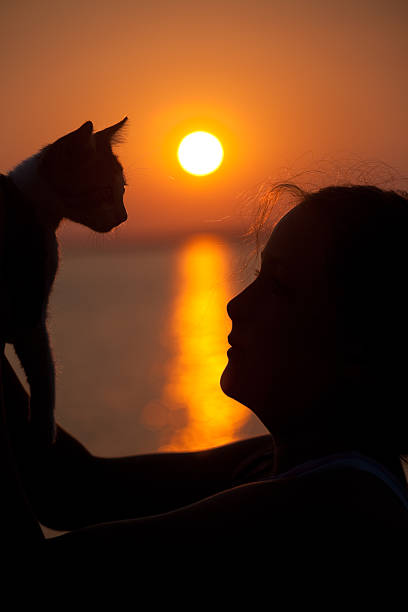 Girl playing with cat against amazing sunset picture id157695009?b=1&k=6&m=157695009&s=612x612&w=0&h=bkwix4v9nt1617jpenzwe6kxcaqvffzbazm vsoazsm=