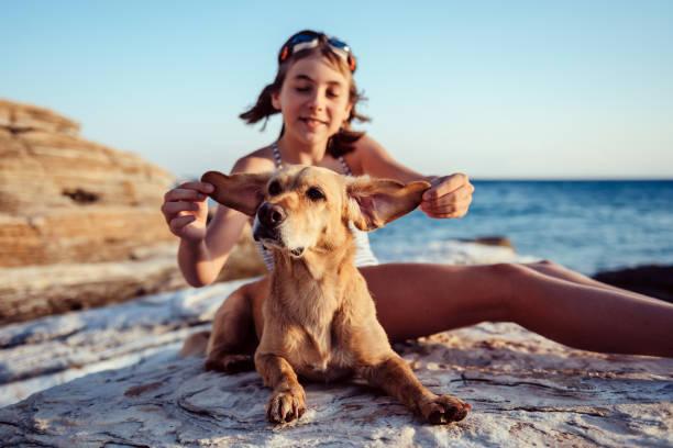 Mädchen spielt mit Hundeohren – Foto