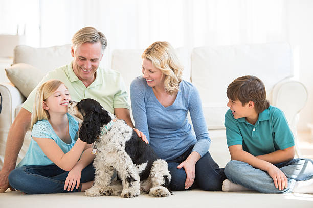 Girl playing with dog while family looking at her picture id176512973?b=1&k=6&m=176512973&s=612x612&w=0&h=hco6igt7jdxz6vcfzgis5eufprdau3ufxmqkiozimg8=