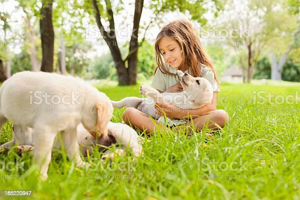 Girl playing with dogs picture id185220947?b=1&k=6&m=185220947&s=612x612&h=ys5f6zoqkvmem3ghycdz00ejetcbvgzti u2xgrxu40=