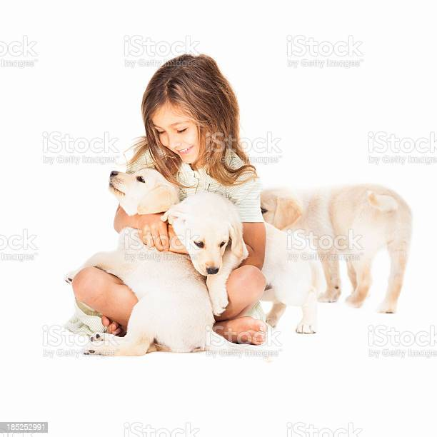 Girl playing with dogs picture id185252991?b=1&k=6&m=185252991&s=612x612&h=js1nnbq7ktr75igibj9u4y2yywyukf0tqjjhffyaac4=
