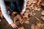 落ち葉で遊ぶ女の子
