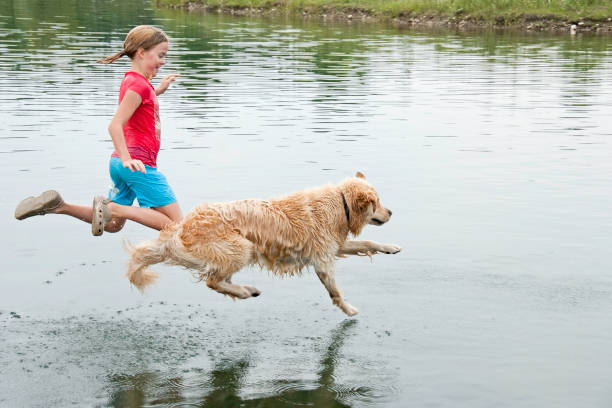 Girl playing with her dog in water picture id183045028?b=1&k=6&m=183045028&s=612x612&w=0&h=kimue5c5dhbpkv06bqrfl pnqlrne5mmfjkaf15c8is=