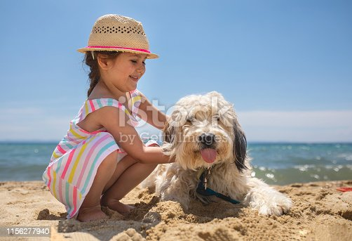 Cute girl and her dog on the beach