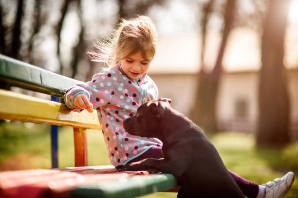 Mädchen spielen mit Ihrem Hund  – Foto