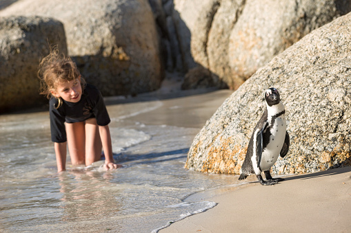 Girl playing with penguin at the beach