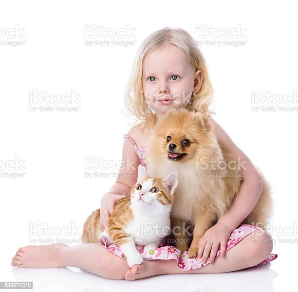 Girl playing with pets dog and cat looking away picture id538672310?b=1&k=6&m=538672310&s=612x612&h=suyc3lig3uv9iz8i3vainrc4rs50fu82q8gmfeaiheu=
