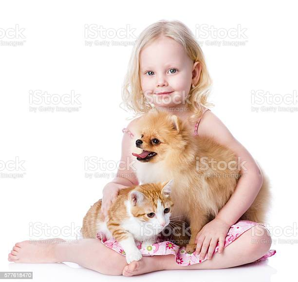 Girl playing with pets dog and cat picture id577618470?b=1&k=6&m=577618470&s=612x612&h=pygut1g2tza ydteybja3ks0bntr8s0i0jymjk0puv4=