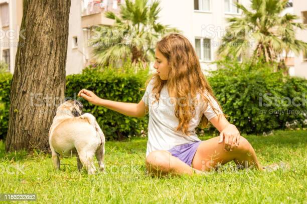 Girl plays with the dog pug in the park on the green grass picture id1153232652?b=1&k=6&m=1153232652&s=612x612&h=nynbyljszuqxmgztl1u2htf9eteq1aytvru jtw dd0=