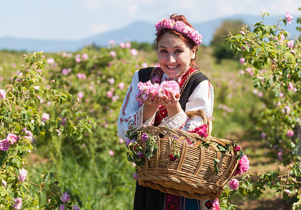Girl posing during the Rose picking festival in Bulgaria stock photo