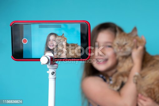 Girl posing in front of camera with cat. Focus on smartphone screen smartphone with tripod. Smiling for photo with pet. Girl having fun with kitty. Hugging fluffy cat. Great childhood pastime