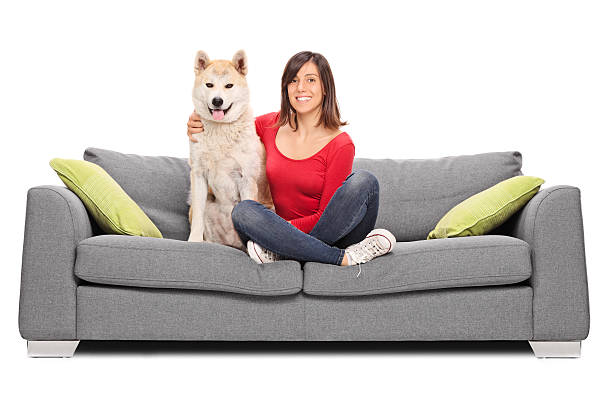 Girl posing with her dog seated on a sofa picture id478216460?b=1&k=6&m=478216460&s=612x612&w=0&h=6vibhh0ghb9oiq42lnahgxmpubegkuqy5 8mdg eela=