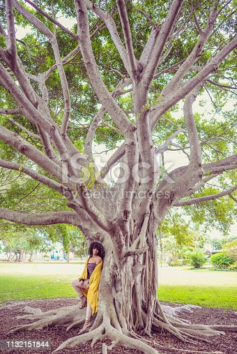 Beautiful african american woman with big natural hair stands under a large banyan tree in a park. She is wrapped in a blanket in millenial yellow. She is a beauty, and looks bold and strong, outdoors in a chilly setting. Retro styling and vintage feel, photo, model and styling feels like an image from the 1970's but  she could be from any decade. She is clearly a confident young woman