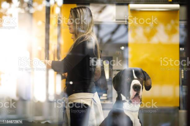Girl pulling money at the atm with her dog picture id1154672974?b=1&k=6&m=1154672974&s=612x612&h=m7jjennhxf8k ynla1x4gkcxji lb7hguadwmp7tkyy=